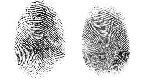 forensics analysis of fingerprints