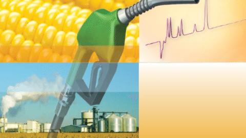 gasoline denatured ethanol analysis