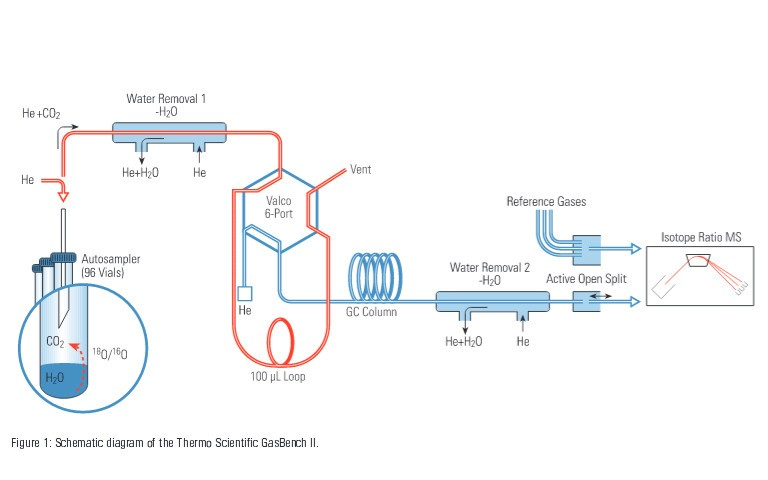 18o-equilibration-on-water-fruit-juice-and-wine-using-thermo-scientific-gasbench-ii-3
