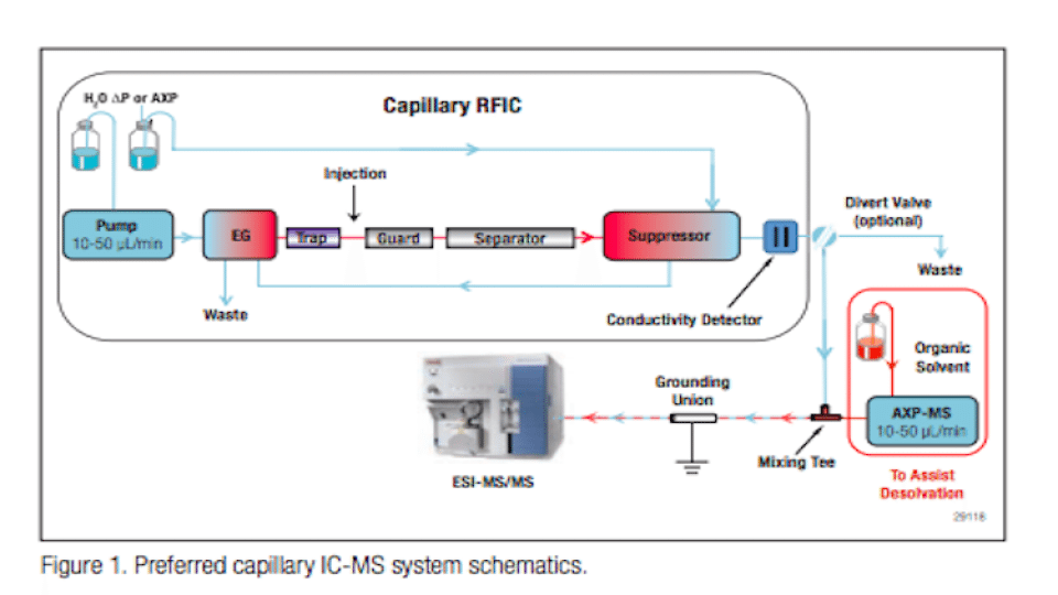 Capillary Ion Chromatography M Spectrometry for Trace ...