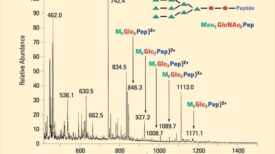 Characterization of Protein Glycosylation Using ESI ChipTM
