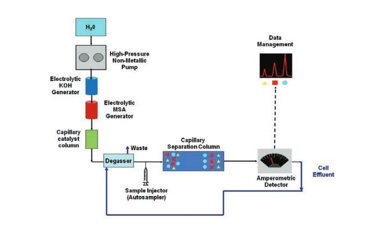 a-new-approach-for-capillary-ion-chromatographic-separation-of-carbohydrates-and-amino-acids