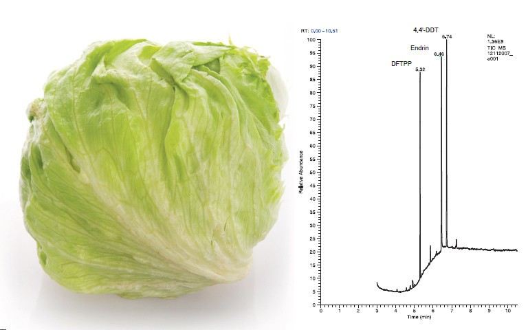 analysis-of-pesticide-residues-in-lettuce-using-a-modified-quechers-extraction-technique-and-single-quadrupole-gcms