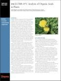 irm-LC/MS: δ¹³C Analysis of Organic Acids in Plants
