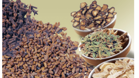 analysis of ayurvedic medicines