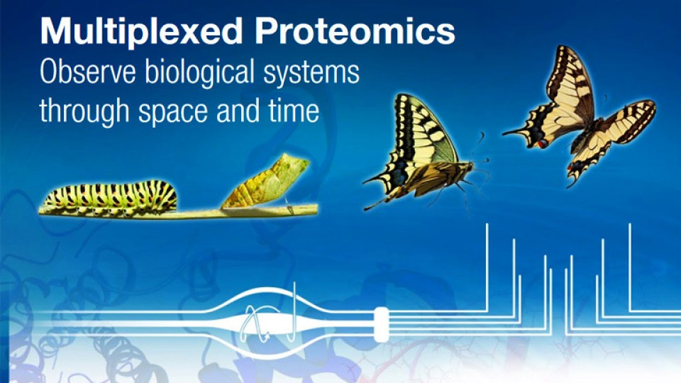 multiplexed-proteomics-AG-header-768x480