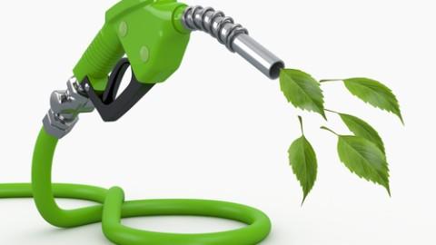 biofuel-gas-nozzle.jpg