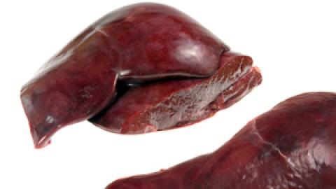 bovine-liver.jpg