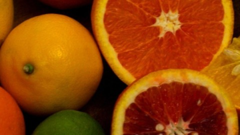 citrus-oil-resized-600.jpg