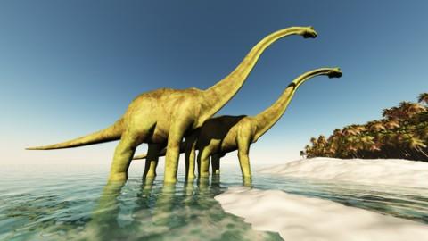 diplodocus-dinosaurs-late-triassic-age.jpg