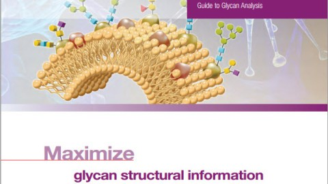 glycan-analysis-guide.jpg