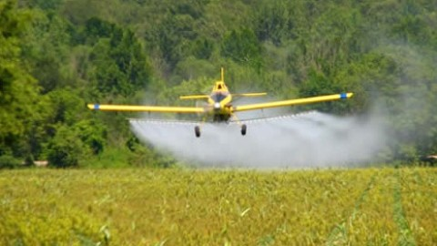 pesticide-crop-dusting-resized-600.jpg