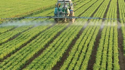 pesticides-farm.jpg