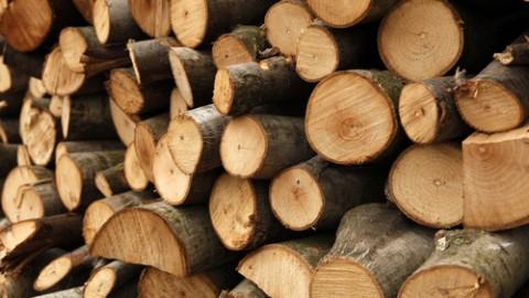 wood-logs.jpg