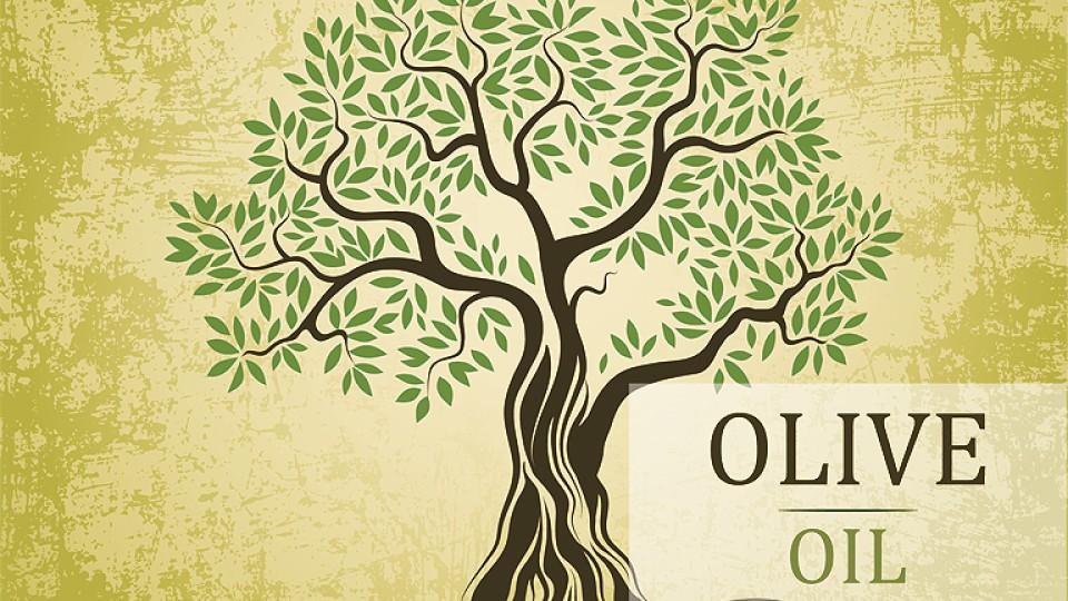 CMD_Olives2