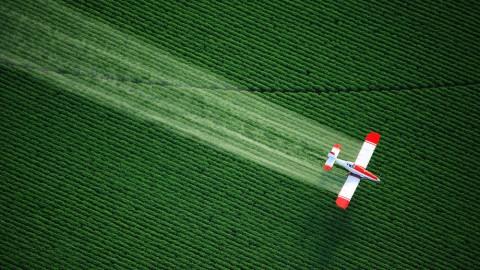 pesticide quantitation