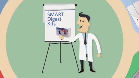 SMART Digest-768x480
