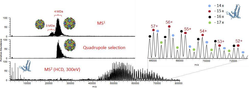 mass-spectrometry-2