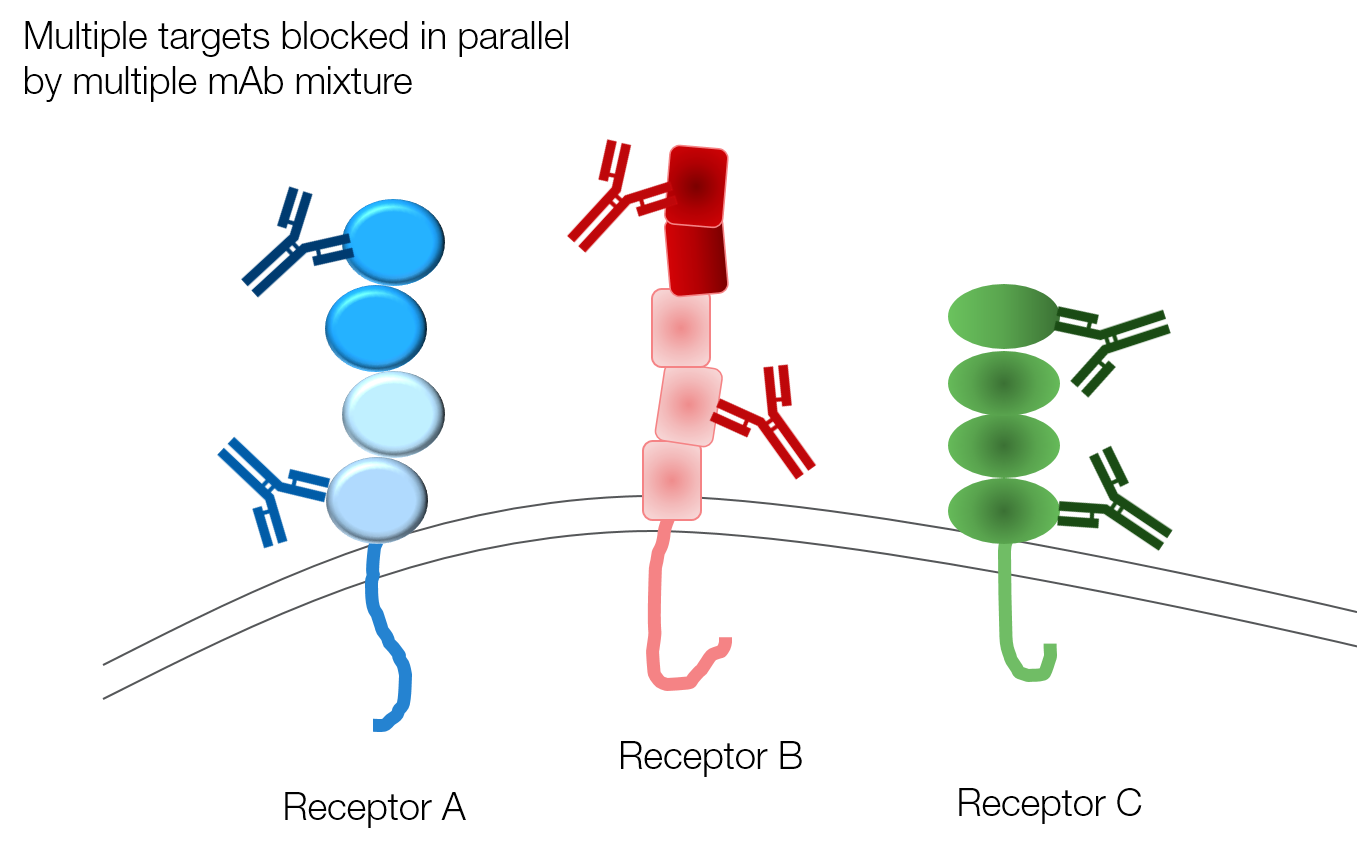 multimab