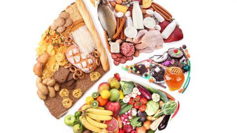food-wheel