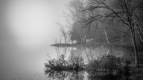 misty_lake