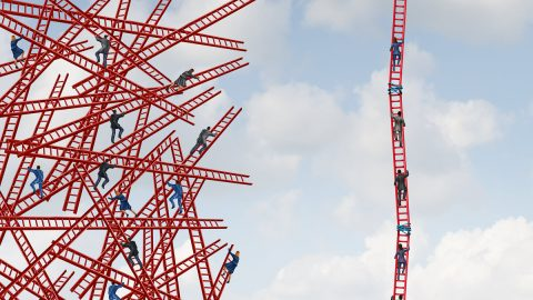 ladders_111120