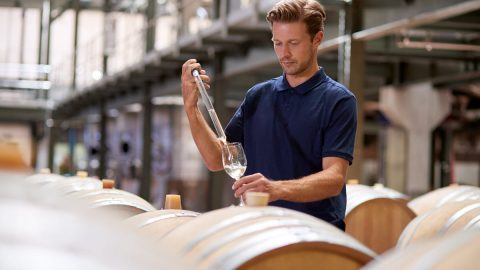wine_making_121520